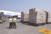 Jasa Import Geosintetik